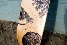 Bordo Bello Skateboard Fundraiser Sean Serafini aesthetic perspective